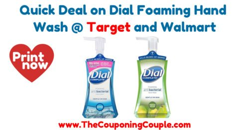 Quick Deal on Dial Foaming Hand Wash
